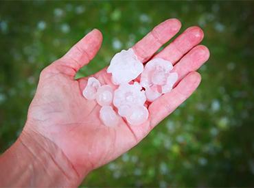man holding hail