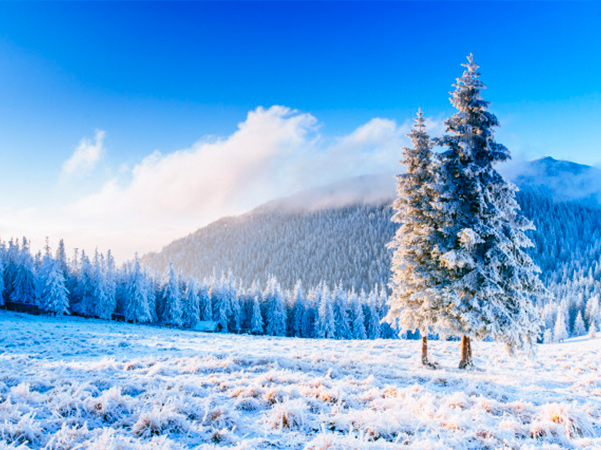 Winter Tips Checklist for Denver Homeowners